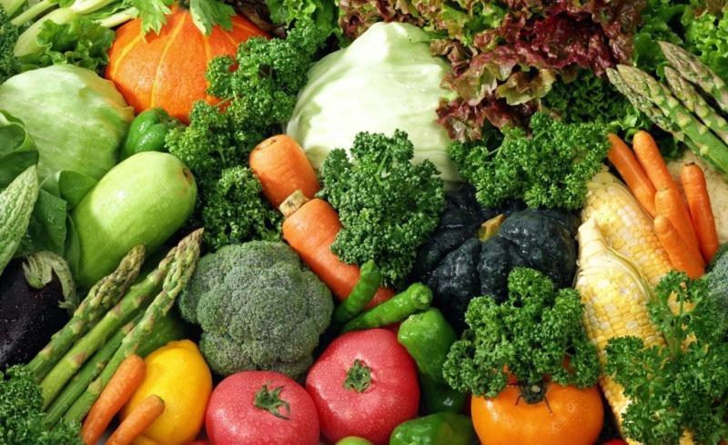 The Garden Health Foods